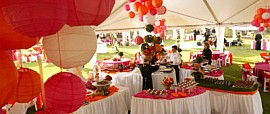 Best Event/Wedding Planner